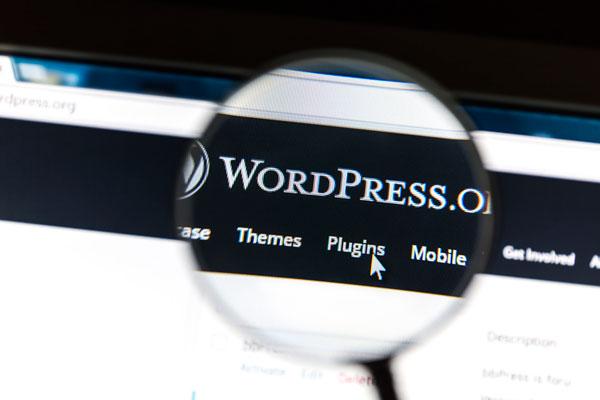 vantaggi pro contro svantaggi wordpress org com